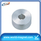 Permanent hot sailing cheap neodymium woofer magnets ring